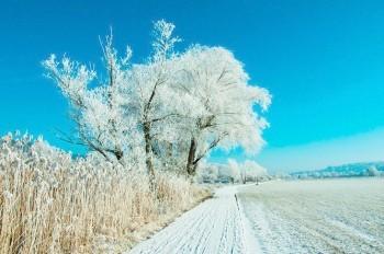 На Чехию надвигается новая волна сильных морозов