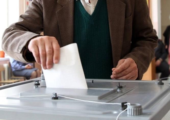 Земан и Драгош вышли во второй тур президентских выборов в Чехии