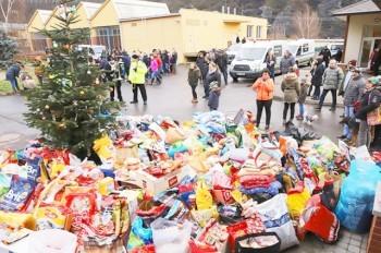 Пражане подарили бездомным собакам на Рождество 9-месячный запас корма
