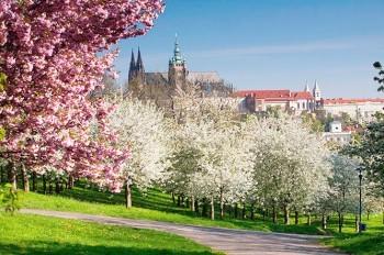 Чехия пережила рекордно теплый день