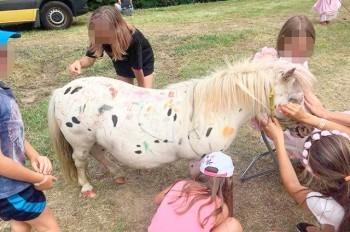 Чешский парк развлечений извинился за рисование на пони