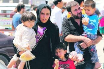 Своих хватает: премьер Чехии отказался принимать сирийских сирот