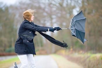 Жителей Чехии предупредили о сильном ветре