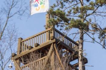 Женщина упала со смотровой башни в Пражском зоопарке