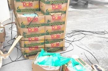 Заключенным Техаса случайно подарили бананы с кокаином